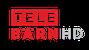 TeleBärn HD